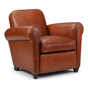 Camford Contemporary Leather Armchair