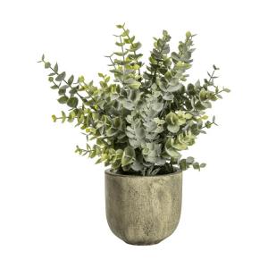 Eucalyptus with Rustic Pot Large